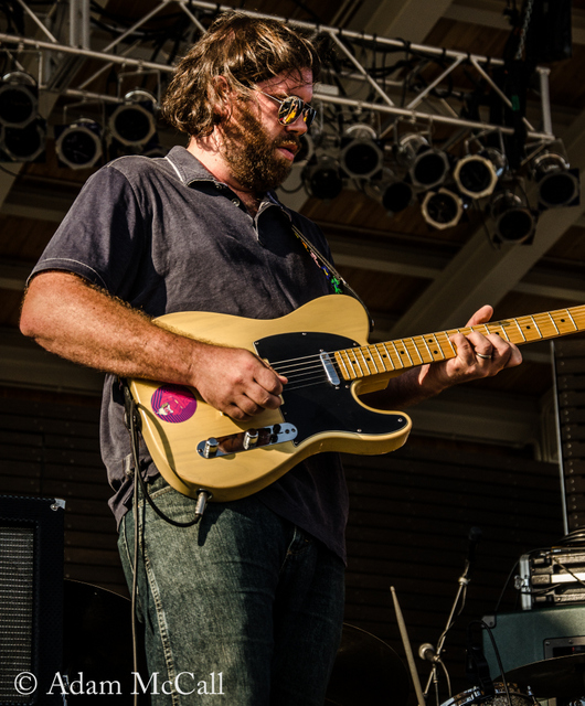 To Terrapin | A Chat With Old Shoe's Matt Robinson